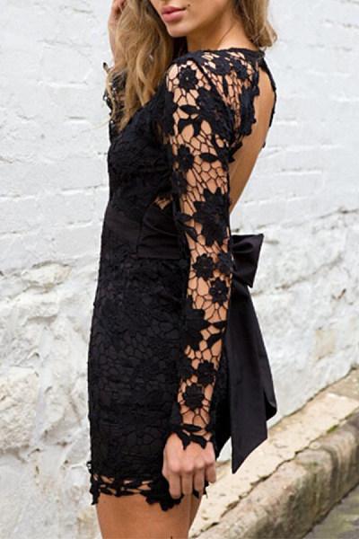 Deep V Neck  Back Hole  Plain  Long Sleeve Bodycon Dresses