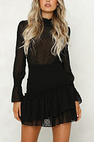 Crew Neck  See Through  Dot  Lantern Sleeve  Long Sleeve Skater Dresses