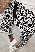 Elastic Waist  Leopard Printed Pants