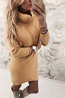 Turtle Neck  Asymmetric Hem  Plain Casual Dresses