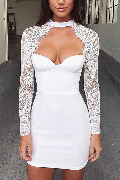High Neck  Zipper  Hollow Out Lace Plain  Long Sleeve Bodycon Dresses