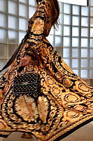 Early Autumn Long Sleeve V-Neck   Print  Maxi Dress