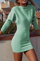 Crew Neck  Plain  Long Sleeve Bodycon Dresses