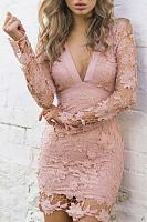 Lace Deep V Neck Backless Hollow Out Bodycon Dress