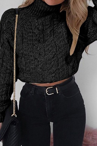 High Neck  Exposed Navel  Plain Sweaters