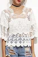 V Neck  See Through  Plain  Bell Sleeve Blouses