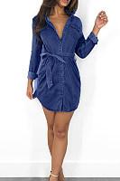 Button Down Collar  Plain  Long Sleeve Bodycon Dresses