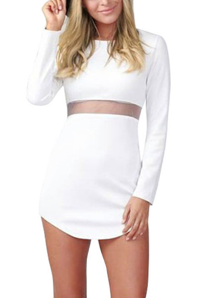 Round Neck  Asymmetric Hem See Through  Plain  Long Sleeve Bodycon Dresses