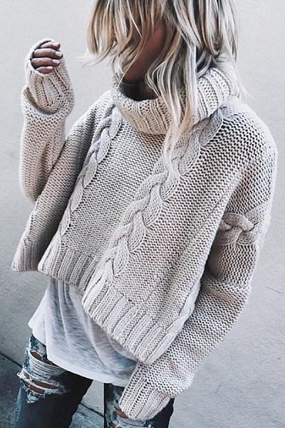 Turtle Neck  Plain  Basic Sweaters