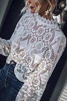 Band Collar  Decorative Lace  Lace Plain  Blouses