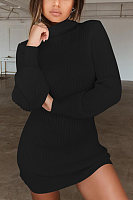 High Neck  Plain  Long Sleeve Bodycon Dresses