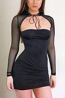 High Neck  Drawstring  Plain  Long Sleeve Bodycon Dresses