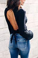 High Neck  Backless  Plain  Lantern Sleeve Sweaters
