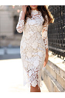 Plain Bodycon Lace Dresses