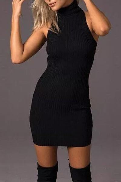 Knit Turtle Neck Backless Sheath Bodycon Dress