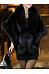 Faux Fur Collar Plain Cape Sleeve Coat