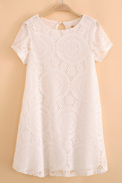 Lace Round Neck Plain Fitted Casual Dress