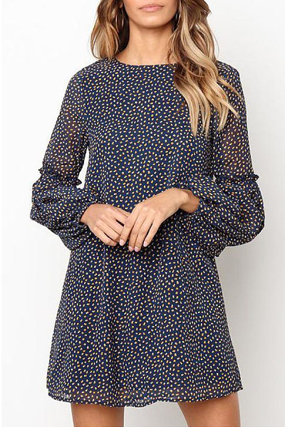 Round Neck  Dot  Lantern Sleeve  Long Sleeve Casual Dresses