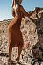 Deep V Neck  Exposed Navel  Plain  Extra Short Sleeve Maxi Dresses