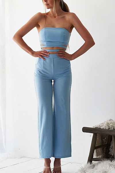 Strapless  Backless  Plain  Sleeveless Jumpsuits
