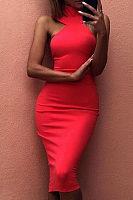 Halter  Zipper  Plain  Sleeveless Bodycon Dresses