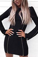 Zipper  Long Sleeve Bodycon Dresses