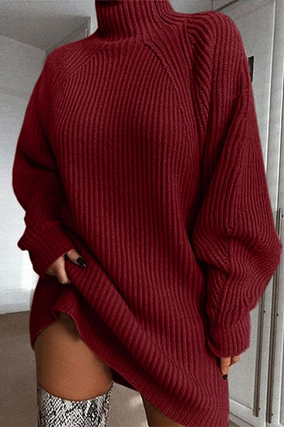 Short High Collar Plain Casual Long Sweater