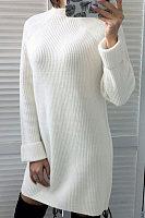 High Neck  Plain  Long Sleeve Casual Dresses