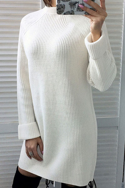 High Neck  Plain  Long Sleeve Casual Dresses