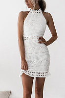 Halter  Decorative Lace Bodycon Dresses