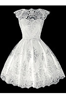 Exquisite Solid Lace Hollow Out Skater Dress
