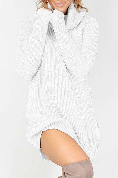 Knit Turtle Neck Casual Dress