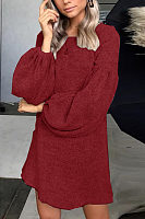 Round Neck  Plain  Lantern Sleeve  Long Sleeve Casual Dresses