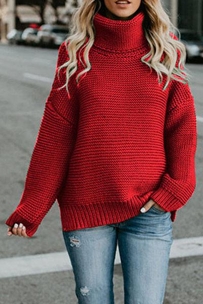 High Neck  Plain  Basic Sweaters