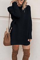 High Neck  Plain  Long Sleeve Sweaters