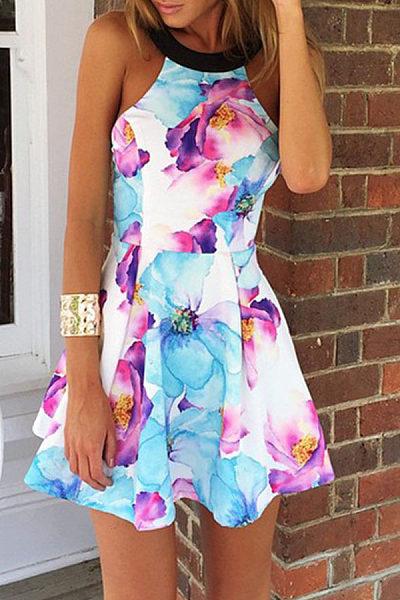 Round Neck  Backless Zipper  Printed  Sleeveless Skater Dresses