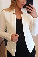 Women Casual Plain Blazers