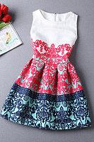 Round Neck  Zipper  Printed  Sleeveless Skater Dresses