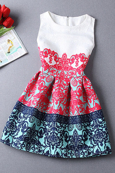 Round Neck  Zipper  Printed  Sleeveless Skater Dresses