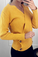 Brief  Decorative Button  Plain  Long Sleeve Sweaters