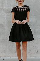 Crew Neck  Decorative Lace  Plain  Short Sleeve Skater Dresses