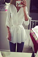 Turn Down Collar  Plain  Long Sleeve Casual Dresses