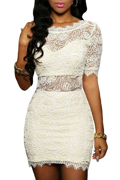 Lace Hollow Out Fitted Bodycon Dress