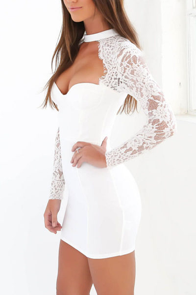 High Neck  Zipper  Hollow Out Lace Plain  Long Sleeve Bodycon Dresses