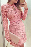 Round Neck  Ruffle Trim  Hollow Out Bodycon Dresses