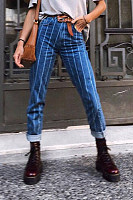 Fitted Casual  Striped  Pants