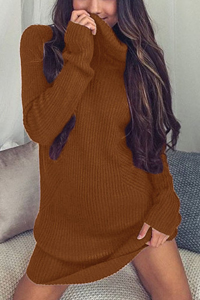 Short High Collar Plain Medium Sweater