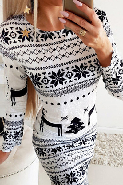 Casual Printed Round Neck Long Sleeve Dress