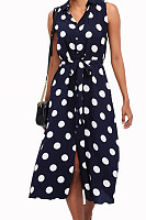 Turn Down Collar  Single Breasted  Dot Skater Dresses