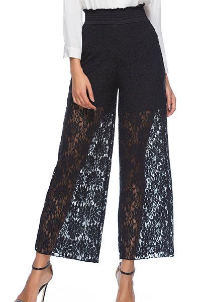 Decorative Lace  Plain Basic  Pants